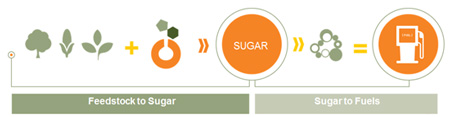 Conversion from sugar to fuel